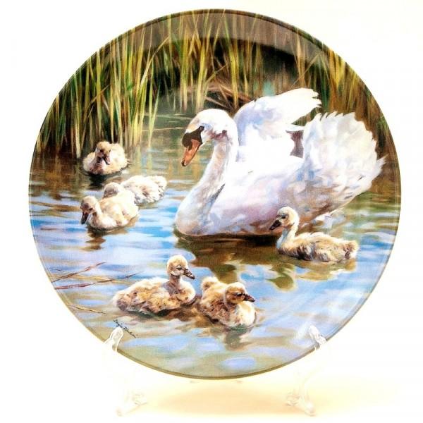 Коллекционная Тарелка «Гордые Лебеди» серия «Птицы у воды», Фарфор, Швейцария -1995г.