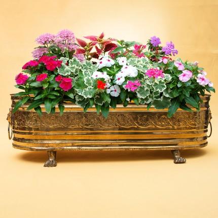 Большой Винтажный Продольный Зольник или Кашпо для цветов. Латунь Франция ХХ век
