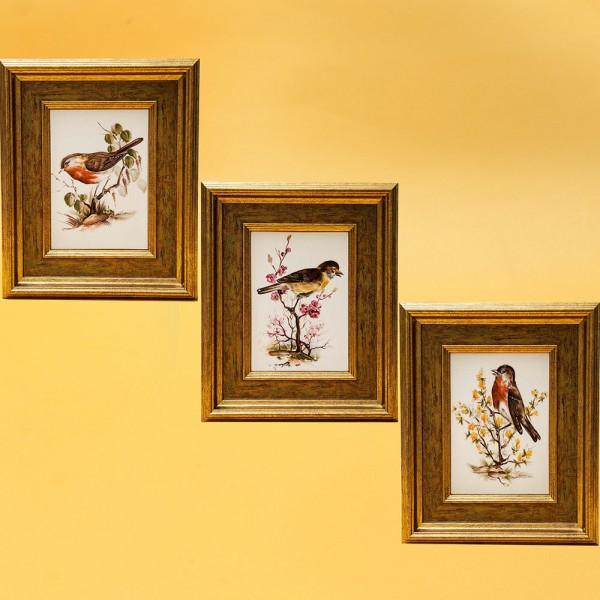 Коллекционный  Набор из Трёх Фарфоровых Плакеток - Панно - Картин «Певчие птицы» Royal Tettau Германия.