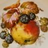 Десертный Набор из 5-ти Фарфоровых Тарелок «ФРУКТЫ» Германия - 1925-1932год.