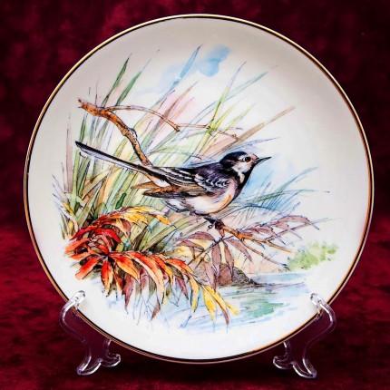 Коллекционная Тарелка «Птичка на ветке» Фарфор,  Caverswall, Англия 80-е годы ХХ века..