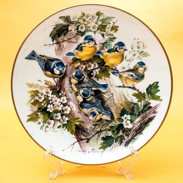 Коллекционная Тарелка «Синички» Фарфор, Хучеройтер - Hutschenreuther, Германия.