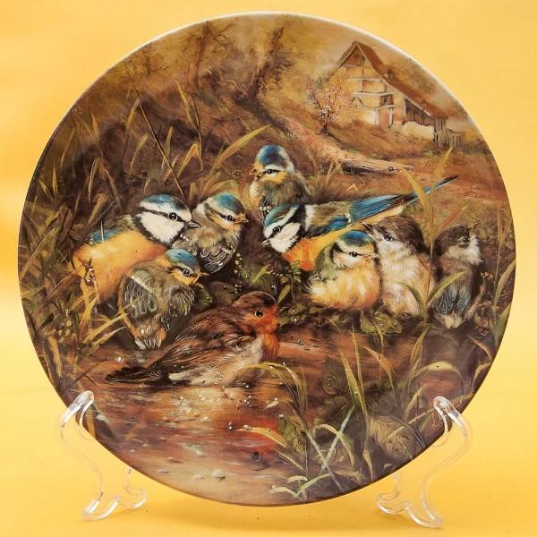 Коллекционная Тарелка «Птицы - Купание малиновки» Фарфор, Seltman Weiden, Германия -1994 год.