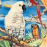 Коллекционная Тарелка «Птицы мира - ПОПУГАИ», Фарфор KAISER Porzellan Германия -1990 год.