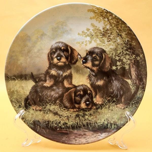Коллекционная Тарелка «Собаки - Щенки отдыхают» Фарфор, Hutschenreuther, Германия -1996 год.